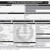 Regin REGPC2 Commercial Gas Testing and Purging Recor